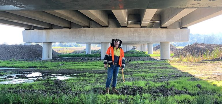 bridge-inspector
